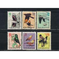 Израиль 1992-95 Птицы Стандарт
