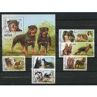 Сомали 1997г. собаки. 6м. 1 блок