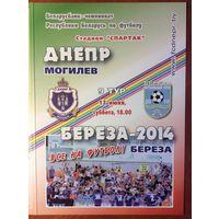 Днепр (Могилев) - Береза-2010 (13.06.2015)