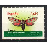 2010 Испания. Род бабочек из семейства Пестрянки. Zygaena rhadamanthus