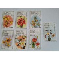 Гвинея-Бисау, цветы, флора, распродажа