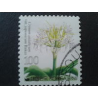 Корея Южная 2006 стандарт, цветы