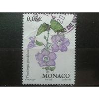 Монако 2002 цветы
