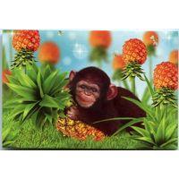 Календарик 2016. Год обезьяны #10