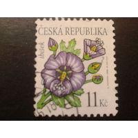 Чехия 2006 цветы