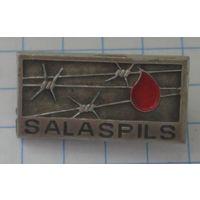 Саласпилс