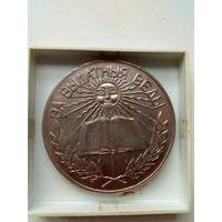 Школьная серебрянная медаль.