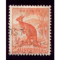1 марка 1937 год Австралия Кенгуру 137
