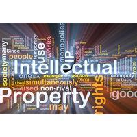 Интеллектуальная собственность в экономике Республики Беларусь - бухгалтерский учет - реферат
