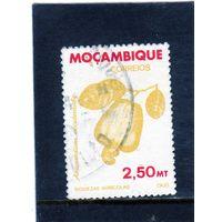 Мозамбик.Ми-831. Кешью (дерево) (Anacardium Occidentale). Серия: Сельскохозяйственное богатство Мозамбика.1981.