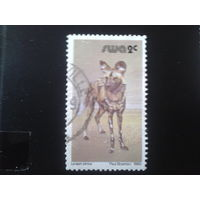 Юго-западная Африка 1980 фауна