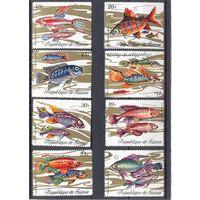 Гвинея  рыбы фауна полная серия