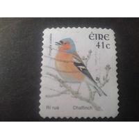 Ирландия 2002 птицы