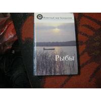 Животный мир Беларуссии.Рыбы.