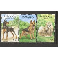 Ямайка 1999 Фауна Собаки