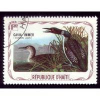 1 марка Гаити Птицы