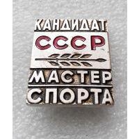 КМС. Кандидат Мастер Спорта СССР. Тяжелый. СФС #0551-SP10