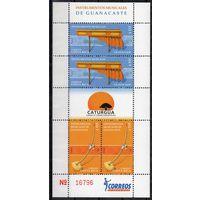 Музыкальные инструменты Коста Рика 2007 год 1 блок из 4 чистых марок