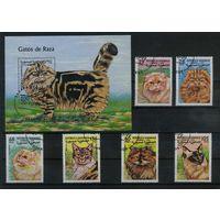 Сахара 1999г. кошки. 6м. 1 блок
