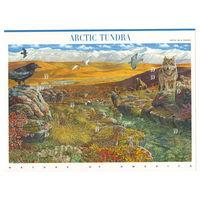 США Арктическая тундра 2003 год чистый полный лист из 10-ти марок