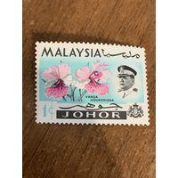 Малайзия 1965. Цветы. Орхидеи. Марка из серии