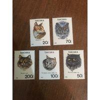 Танзания 1992. Домашние животные. Коты. Полная серия