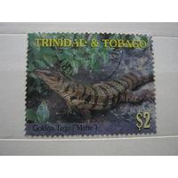 Марка - Тринидад и Тобаго, фауна ящерица