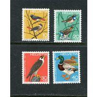 Швейцария. Местные виды птиц. Вып.4