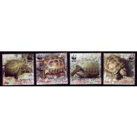 4 марки 2007 год Армения Черепахи 561-564
