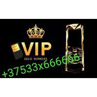 Элитный платиновый Номер МТС +37533х666666