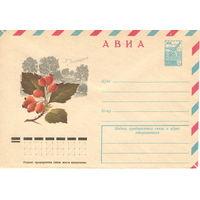 Конверт СССР АВИА, Боярышник, 1978 г