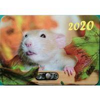 Календарик Крыса