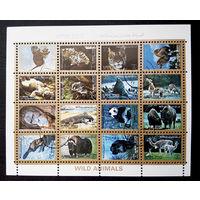 Аджман 1973 г. Дикие животные. Фауна. Сцепка, полная серия из 16 марок #0156-Ф1P37