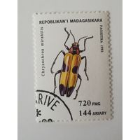 Мадагаскар 1994. Жуки