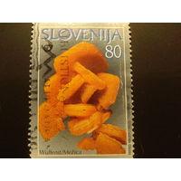 Словения 1997г. Минералы