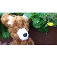 Собачка СССР, пес, песик- советская мягкая игрушка- кудрявый мех