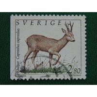 Швеция 1992г.  Фауна.