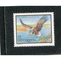 Австрия. Орлан белохвостый