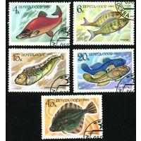 Промысловые рыбы СССР 1983 год серия из 5 марок