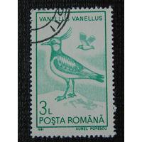 Румыния 1991г. Птицы.