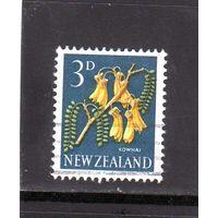 Новая Зеландия.Ми-396. Kowhai (Sophora microphylla). 1960.