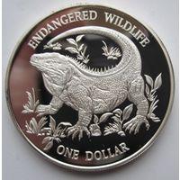 Каймановы острова 1 доллар 1995. Игуана. Серебро (21)