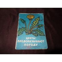Цветы предсказывают погоду , книга - раскраска , СССР .