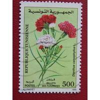 Тунис 1999г. Флора.