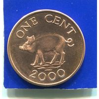 Бермудские острова , Бермуды 1 цент 2000 UNC