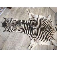 Шкура зебры ( натуральная кожа )