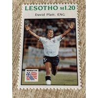 Лесото 1994. Чемпионат мира по футболу США 1994. Марка из серии
