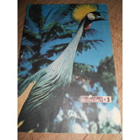 Журнал Юный натуралист 1972 #3