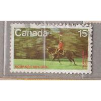 Лошади всадник флаг фауна Канада 1973 год   лот  8 менее 20 % от каталога