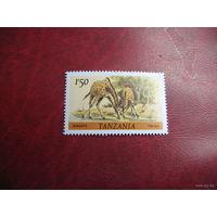 Танзания 1980. Жираф